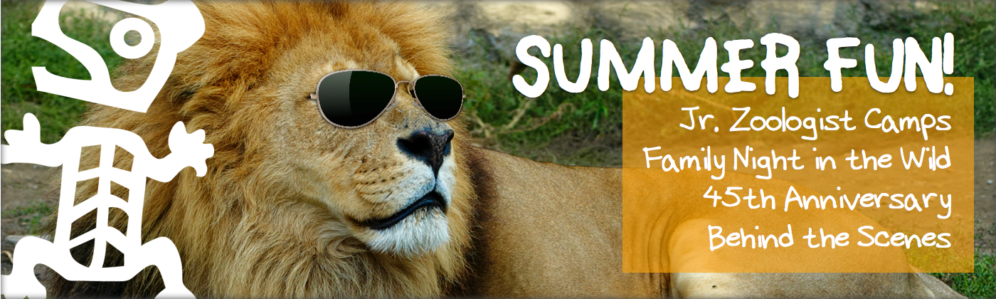 Summer Fun at the Greater Vancouver Zoo