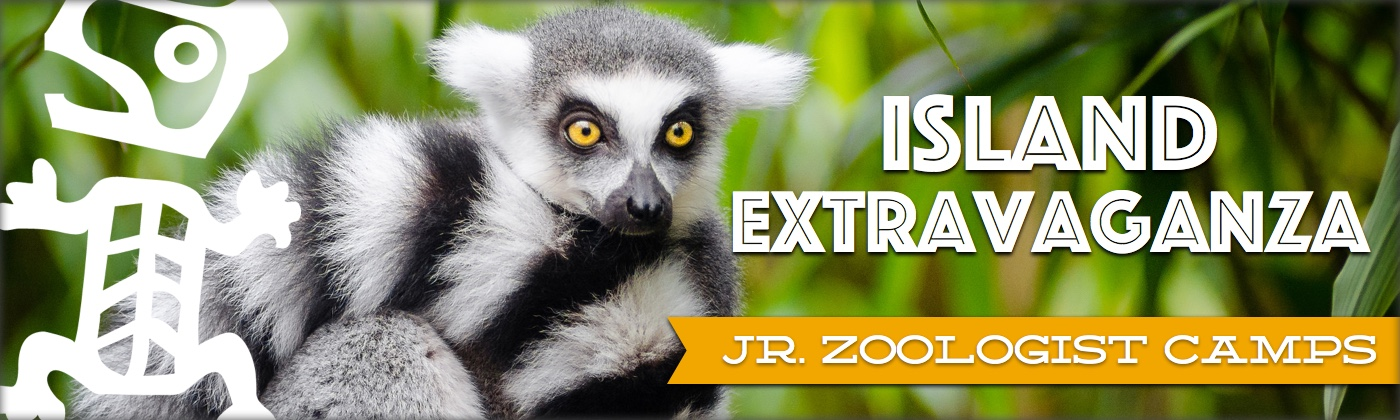 Jr. Zoologist Summer Camps