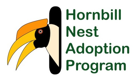 hornbill-nest-adoption