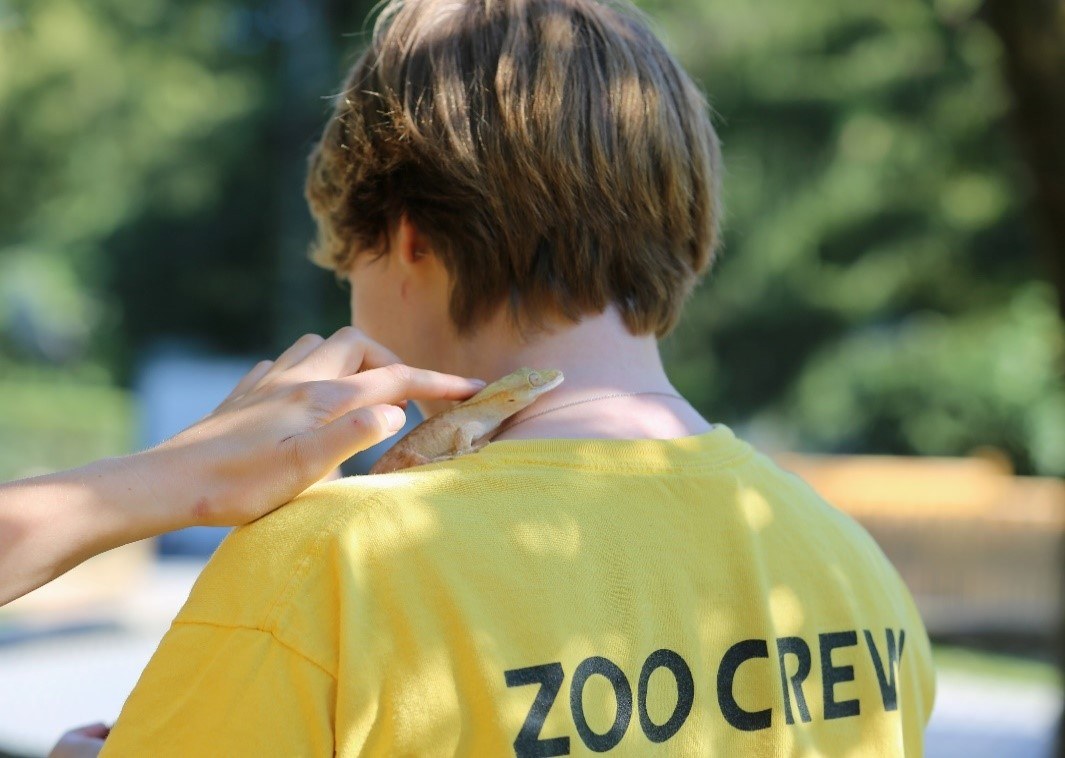 Outreach programs at GVZOO